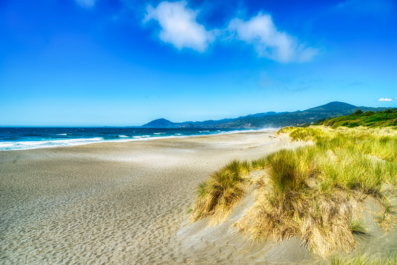 Sandy beach along Hwy 101 in Southern Oregon