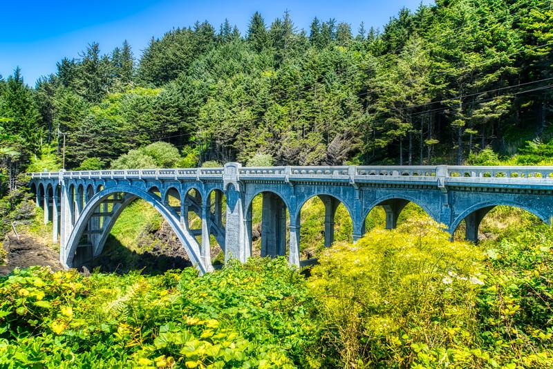 A bridge along the Otter Crest Loop