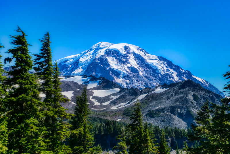 Mt. Rainier from lower Spray Park