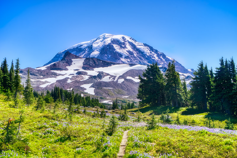 Mt. Rainier from Spray Park