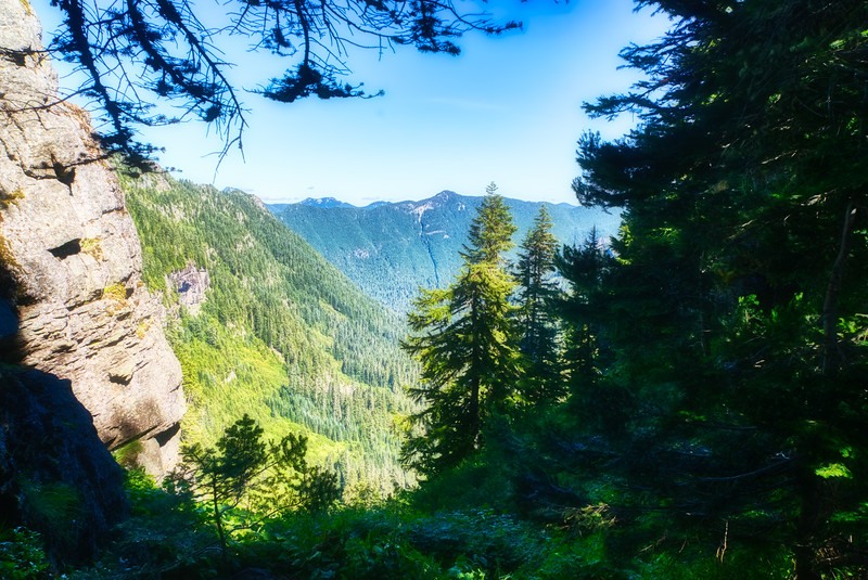 Looking down Ipsut Creek Canyon from Ipsut Pass