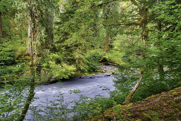 An upper section of the Hoh River in the Hoh Rain Forest