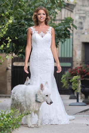 Photo de la mariée en robe de mariée entourée de chiens blanc