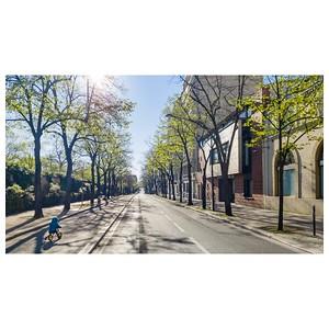 Lutin bleu en draisienne  Cette ambiance étrange d'une promenade matinale dans des rues désertées...  #covid19 #paris #parisphoto #draisienne #sortirunpeu #respirer #lightexmachina