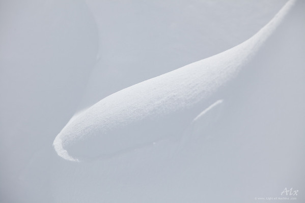 Larme  Massif du Mont Blanc, près du Lac Bleu, au-dessus du Plan de l'Aiguille Les formes de la nature font écho à nos sentiments.