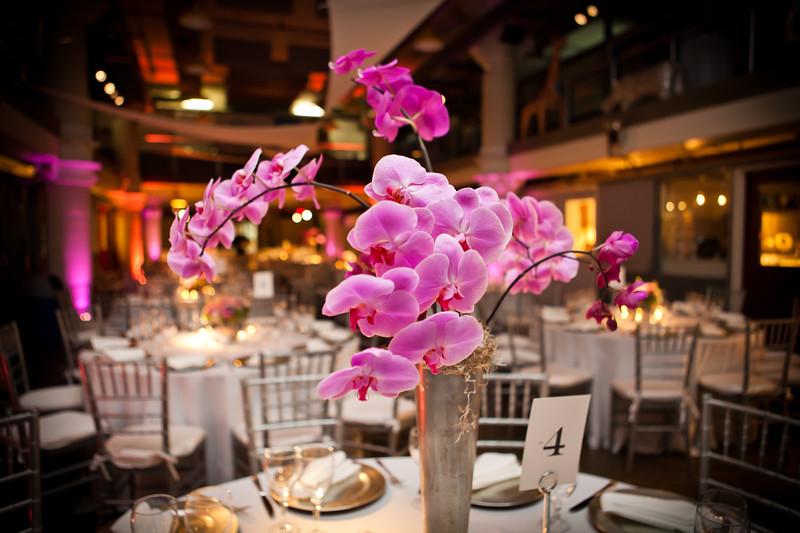best wedding photographer NY