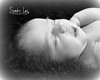 Newborn Portraits by Sandra Lee Photography Studio & Gallery of Petoskey, Mi 231-622-2066 also covering Harbor Springs and all of Northern Mi