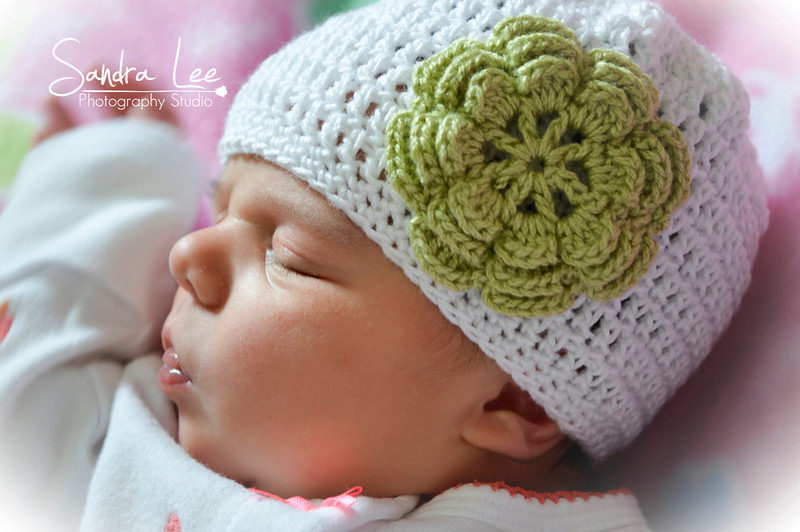 Newborn Portraits by Sandra Lee Photography Studio & Gallery of Petoskey, Mi 231-622-2066 also covering Harbor Springs and all of Northern Michigan