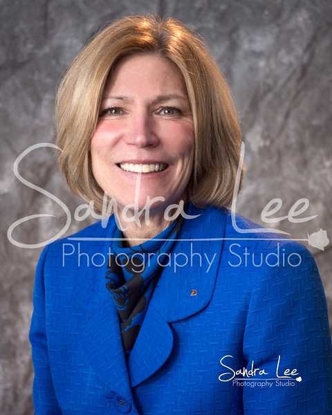 Petoskey photographer: Sandra Lee Photography Studio captured these business headshots for the Petoskey Regional Chamber of Commerce Board Members.