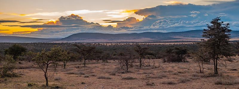 """""""Sunset over the Serengeti"""" - Barbara Gaskin"""
