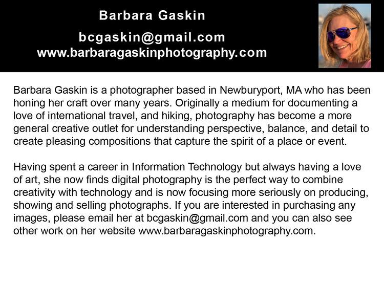 """bcgaskin@gmail.com<br />  <a href=""""http://www.barbaragaskinphotography.com"""">http://www.barbaragaskinphotography.com</a>"""