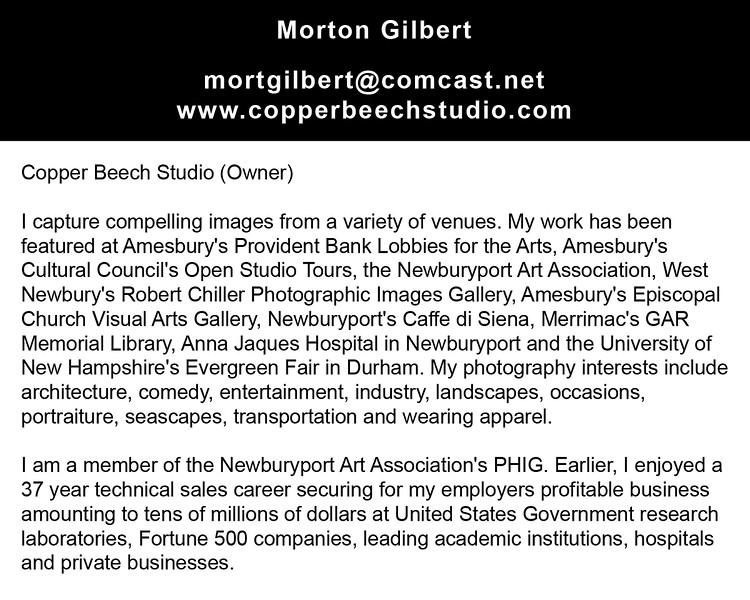 """mortgilbert@comcast.net<br /> <a href=""""http://www.copperbeechstudio.com"""">http://www.copperbeechstudio.com</a>"""