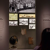 70 L3 005 000 – BradshawG – Community Galleries – IMG_4655