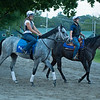 Essential Quality on the way to the. main track.<br /> Saratoga racing scenes in Saratoga Springs, N.Y. on Aug. 5, 2021.