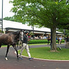 Hip 448 Jeweled Princess at Gainesway and purchased by Robert Stack's Stoneriggs Farm.<br /> Scenes, people and horses at The July Sale at Fasig-Tipton near Lexington, Ky. on July 12, 2021.