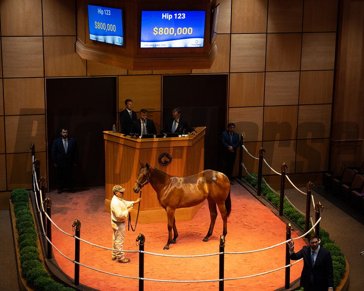 Hip 123 filly by Into Mischief out of Cashing Tickets from Burleson Farms, agent.<br /> Scenes, people and horses at The July Sale at Fasig-Tipton near Lexington, Ky. on July 13, 2021.