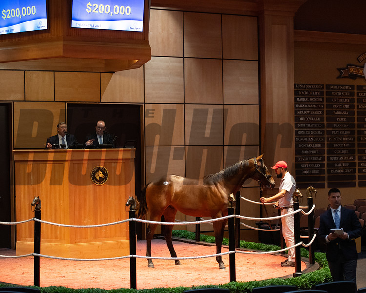 Hip 44 colt by Mor Spirit out of Malibu Cove at Eaton Sales.<br /> Scenes, people and horses at The July Sale at Fasig-Tipton near Lexington, Ky. on July 12, 2021.