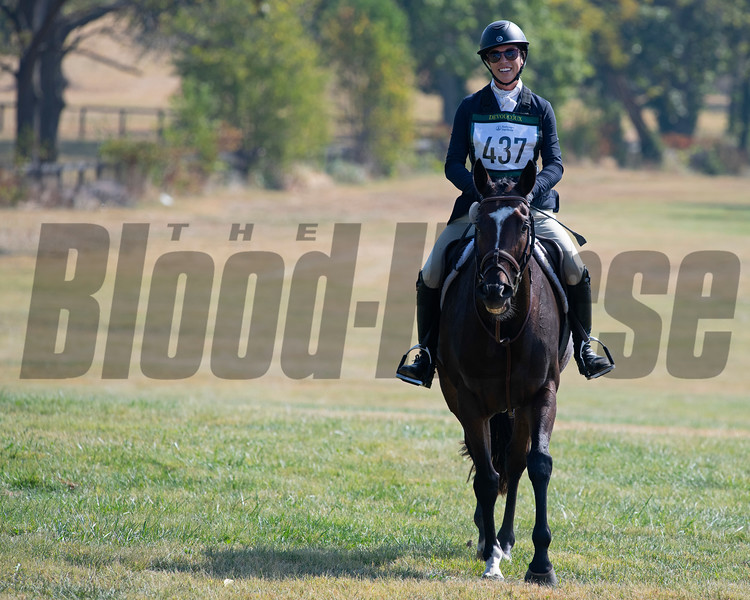 #437 Tower of Texas<br /> Thoroughbred Makeover at the Kentucky Horse Park.