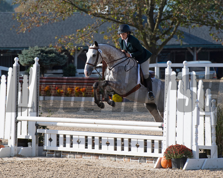#48 Blazin Luck with Emilie Figgins<br /> Thoroughbred Makeover at the Kentucky Horse Park.