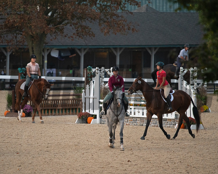 Warmup<br /> Thoroughbred Makeover at the Kentucky Horse Park.