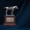Eclipse Horse of the Year,<br /> Eclipse Award images near Versailles, Ky., on Jan. 5, 2021.