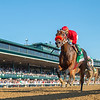 Letruska with Irad Ortiz jr. wins the Juddmonte Farms Spinser (G1) at Keeneland in Lexington, KY. on Oct. 10, 2021.