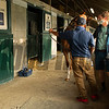 Keith Latson DVM examining  Hip 417 at Mt. Brilliant<br /> Keeneland September sale yearlings in Lexington, KY on September 14, 2020.