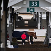 Groom and horse in barn area.<br /> Scenes at Keeneland near Lexington, Ky., on April 15, 2021. .