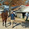Hip 836 colt by Bolt d'Oro out of Stormbeforethecalm at Summerfield as consignor Francis Vanlangendonck looks on (right). <br /> Sales horses at the Keeneland November Sale at Keeneland in Lexington, Ky. on November 10, 2020.