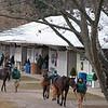 Scene at Fasig-Tipton Winter Mixed Sale in Lexington, Ky. on Feb. 6, 2021.