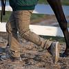 handler walks horse back to barn<br /> Keeneland January Sales at Keeneland near Lexington, Ky., on Jan. 14, 2021.