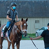 Dynamic One<br /> Horses in training during Travers week in Saratoga on Aug. 26, 2021.