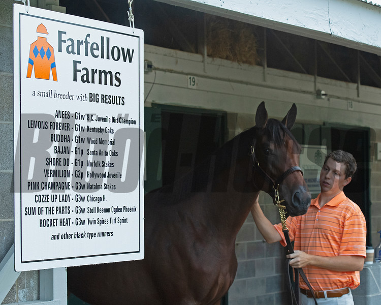 Hip 1355 filly by Honor Code out of Exonerated from Farfellow Farms with farm manager Josh Hennessy<br /> at Keeneland September sale yearlings in Lexington, KY on September 16, 2020.