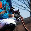 Corey Lanerie knotting his reins while on Bode by You in race 3. <br /> Scenes from opening day at Keeneland near Lexington, Ky., on April 2, 2021.