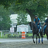 horses going to the main track<br /> Horses in training during Travers week in Saratoga on Aug. 26, 2021.