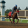 Letruska training on the main track at Keeneland on July 3, 2021.