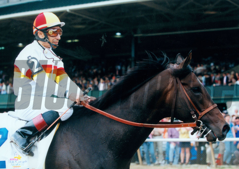 Millennium Wind at the 2001 Bluegrass Stakes.<br /> Photo by Anne M. Eberhart