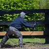 Caption: Fence painting<br />   on April 21, 2020 Dixiana in Lexington, KY.