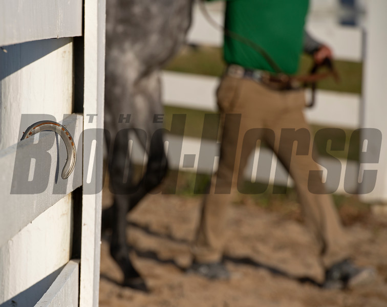 horse shoe hangs on fence as handler and horse walk to sales<br /> Keeneland January Sales at Keeneland near Lexington, Ky., on Jan. 14, 2021.