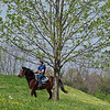Caption: 2018 Paynter o/o Hallie and Beth colt<br /> Training at Silver Springs Training, part of Silver Springs Stud, near Lexington, Ky.,  on April 8, 2020 Silver Springs in Lexington, KY.