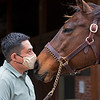 Bubbler gets a kiss from groom Osvin Figueroa. <br /> Bubbler owned by Clearsky and Hill 'n' Dale is at a division of the Cleary family's Clearsky Farm near Midway, Ky. on March 11, 2021.