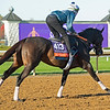 Rushing Fall<br /> Breeders' Cup horses at Keeneland in Lexington, Ky. on November 4, 2020.