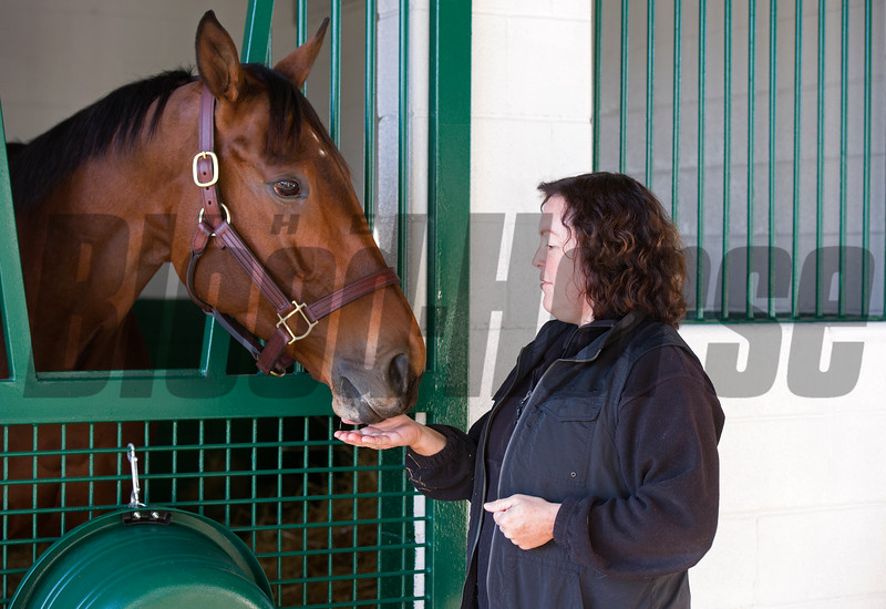 mint from broodmare manager Aimee Compton<br /> Beholder arrives at Spendthrift Farm in Lexington, Ky., on Nov. 21, 2016, in Lexington, Ky.