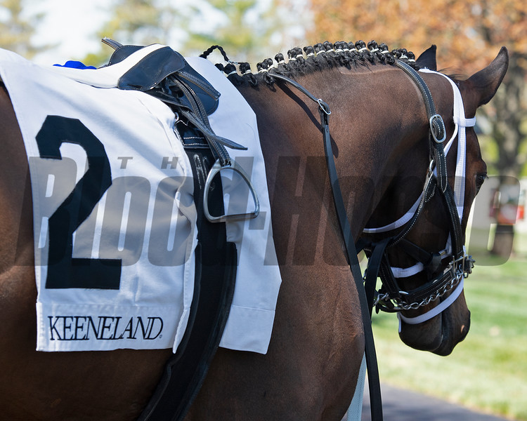 American Bound in Race 3. <br /> Scenes from opening day at Keeneland near Lexington, Ky., on April 2, 2021.