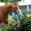 Scenes, people and horses at The July Sale at Fasig-Tipton near Lexington, Ky. on July 11, 2021.