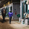 Life Is Good walking the shedrow  on May 25, 2021.