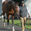 Authentic at Spendthrift Farm near Lexington, Ky., on Dec. 9, 2020.