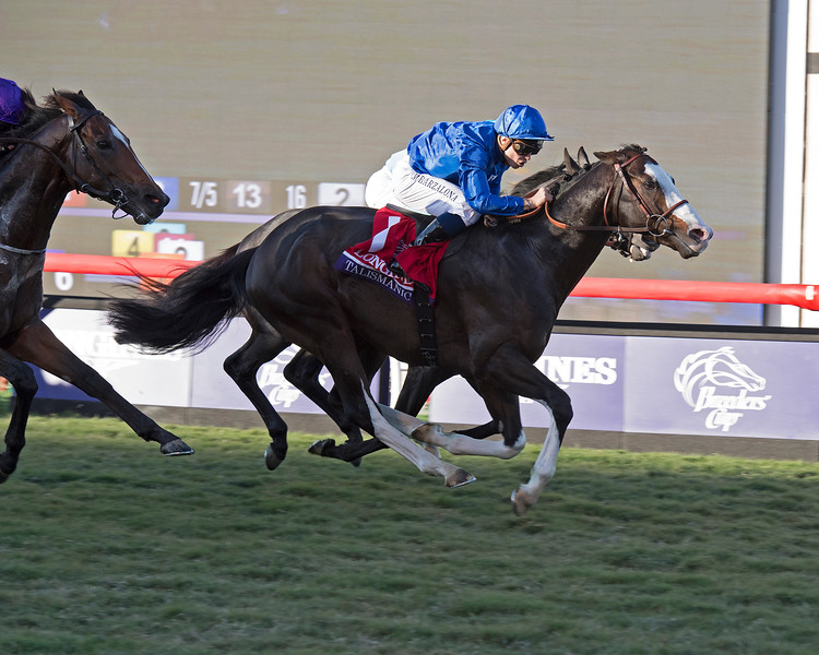 Talismanic wins the Breeders Cup Turf on November 4, 2017. Photo by Anne Eberhardt.