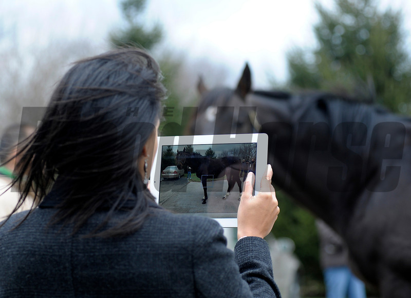 Caption: using an iPad to take photos during a stallion show at Crestwood<br /> Keeneland January sale at Keeneland in Lexington, Ky. on Jan. 7, 2013.<br /> KeeJan2013 Sales MonOrigs2 image146<br /> Photo by Anne M. Eberhardt