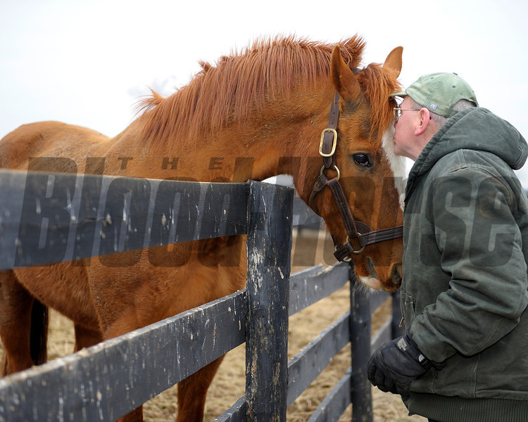 Caption: Marquetry gets a kiss from Blowen<br /> Michael Blowen and the horses at Old Friends retirement home near Georgetown, Ky. on Jan. 31, 2011.<br /> Origs2 image198<br /> Photo by Anne M. Eberhardt